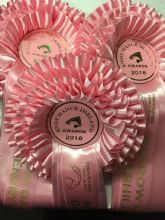 Three Tier Rosettes - Pink